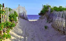 Beach Scene With Sand Dunes An...