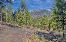 View Of Sunset Crater Volcano ...