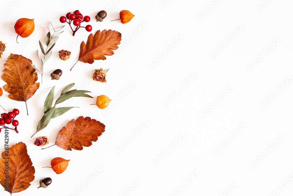 Fototapety, obrazy: Autumn composition. Physalis flowers, eucalyptus leaves, rowan berries on white background. Autumn, fall, thanksgiving day concept. Flat lay, top view, copy space