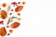 canvas print picture Autumn composition. Physalis flowers, eucalyptus leaves, rowan berries on white background. Autumn, fall, thanksgiving day concept. Flat lay, top view, copy space