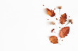 canvas print picture Autumn composition. Dried leaves, flowers, rowan berries on white background. Autumn, fall, thanksgiving day concept. Flat lay, top view, copy space