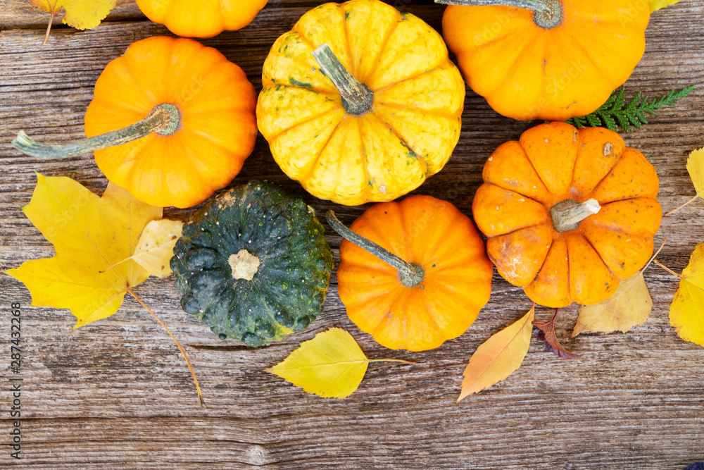 Fototapety, obrazy: pumpkin on table