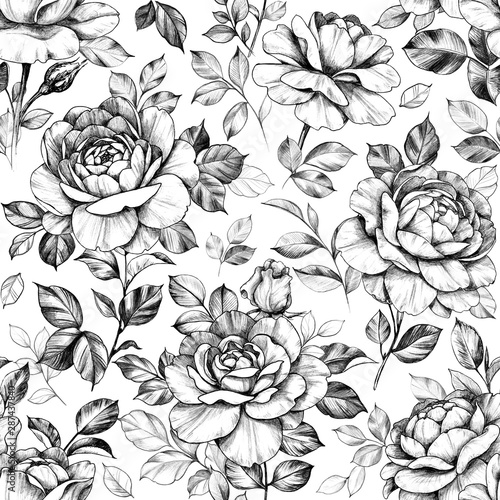 Foto auf Leinwand Künstlich Seamless Pattern with Hand Drawn Rose Flowers