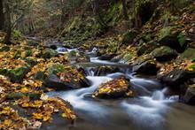 Jesienny Górski Potok