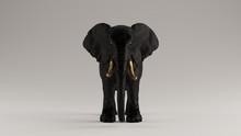 Black Elephant With Golden Tusks Front View 3d Illustration 3d Render