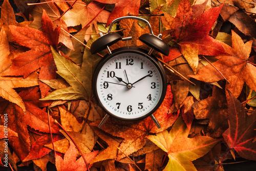 Fotomural  Autumn season time