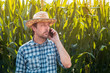Leinwandbild Motiv Corn farmer talking on mobile phone in crop field