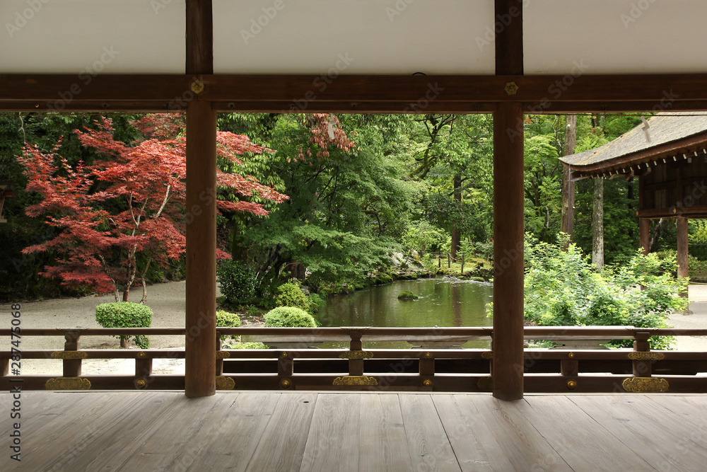 Fototapety, obrazy: Beautiful japanese garden in Kyoto (Kamigamo shrine)