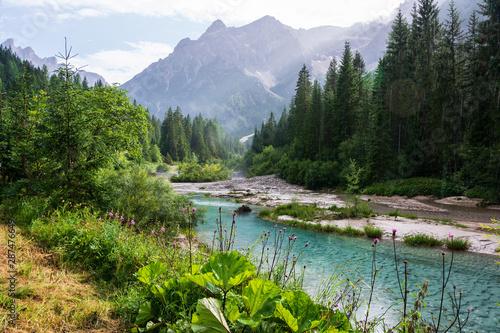 Door stickers Forest river Regen in bergen, Val Fiscalina Dolomites.