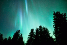 Northern Lights In Southeast A...