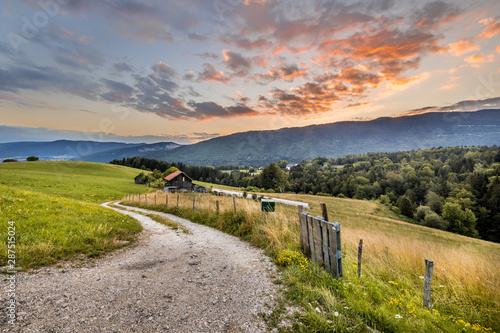 Rural road in mountain landscape in French Alps Wallpaper Mural