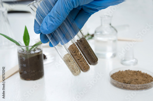 Photo Laboratory assistant holding glass tubes of sand, black soil and clay befor test