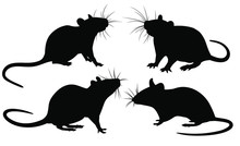 The Set Of Rat Silhouettes.