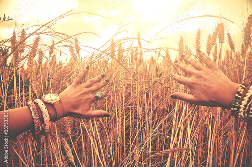 Photo sur Aluminium Graffiti collage Hands of young woman in a wheat field.