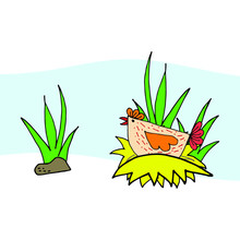 A Nice Simple Flat Hen Incubates An Egg In A Nest Near A Tall Grass - A Naive Illustration Of Rural Life