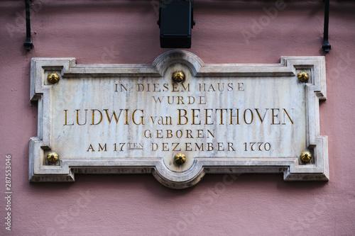 Detail birth house Beethoven Bonn Canvas Print