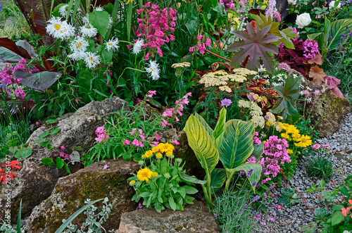 A colourful flower border with wild planting of mixed flowers including Astilbe, Canvas Print