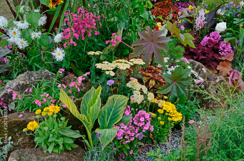 A colourful flower border with wild planting of mixed flowers including Astilbe, Wallpaper Mural