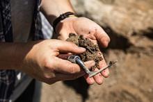 Archaeologist Excavating Looki...