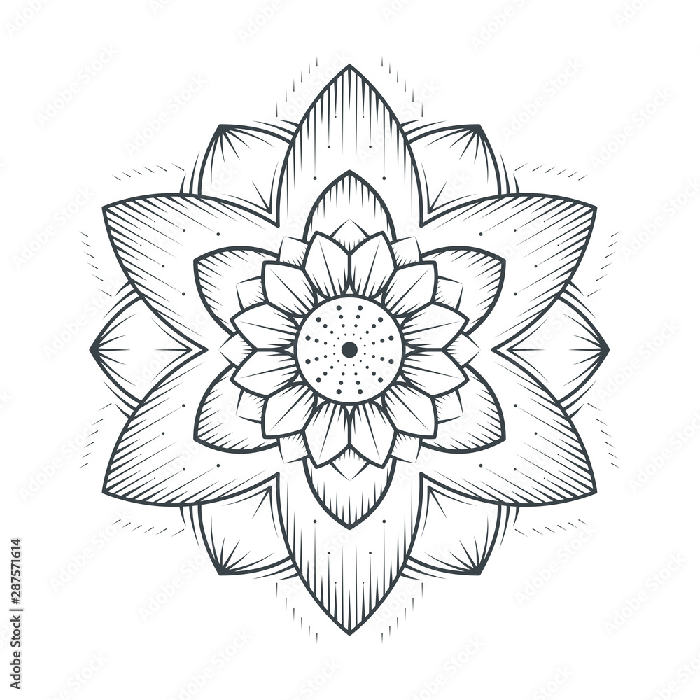 Petals flower mandala line art lace on white background. Vector illustration