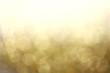 Leinwanddruck Bild Abstract light blur blink sparkle defocus backgound.