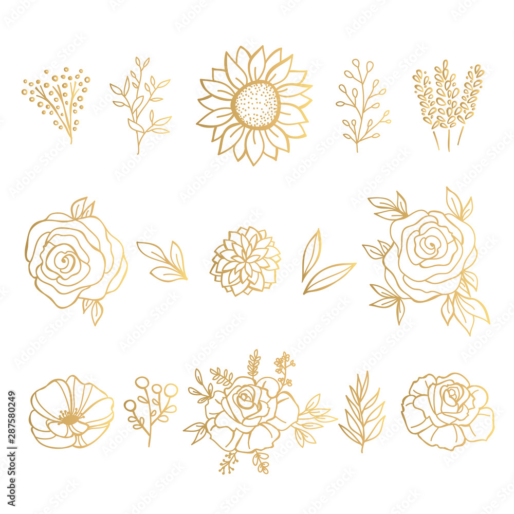 Fototapeta Collection of Gold Hand Drawn Floral Elements. Vector Frames and  Leaves, Flowers and Herbs