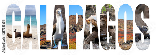 The Galapagos Islands letter concept   © gdvcom