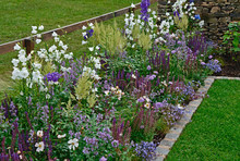 A Colourful Border With White,...