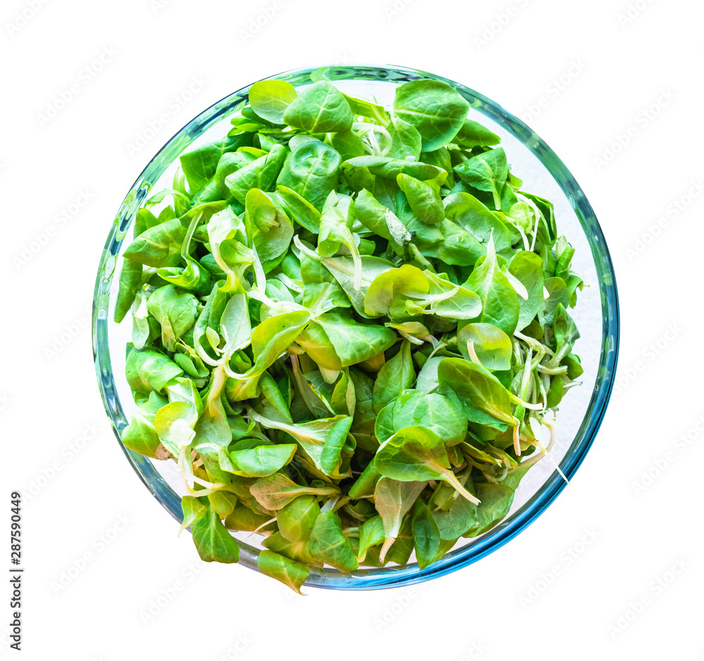 Fototapety, obrazy: top view of corn (mache) salad in glass bowl
