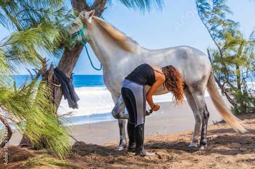 Photo  Cavalière étrillant son cheval blanc