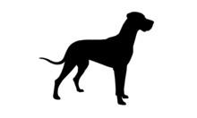 Deutsche Dogge Silhouette