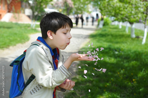 Fotografia  Handsome young boy enjoys spring, he holds petals of pink flowers in his hands a