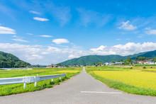 松本市中山の田園