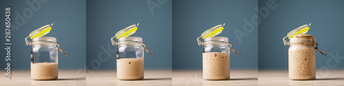 Fototapeta Collage of four photos of home made starter yeast growing obraz