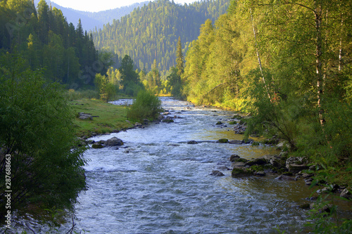 Fotobehang Bos rivier Calm river flowing through the forest to the foot of the mountains.