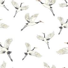 Seamless Pattern, Background With Tropical Birds. White Heron, Cockatoo Parrot. Colored And Outline Design On Navy Blue Background.. Vector Illustration. Isolated On Black Background.