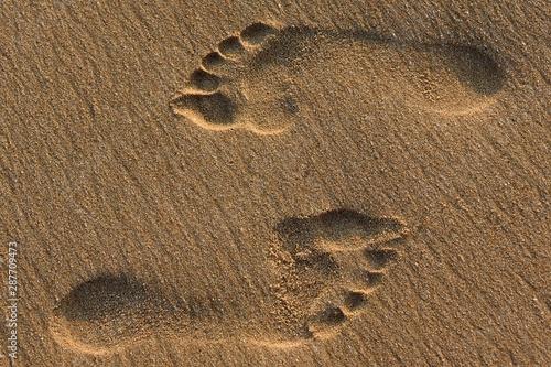 traces de pas sur la plage Canvas-taulu