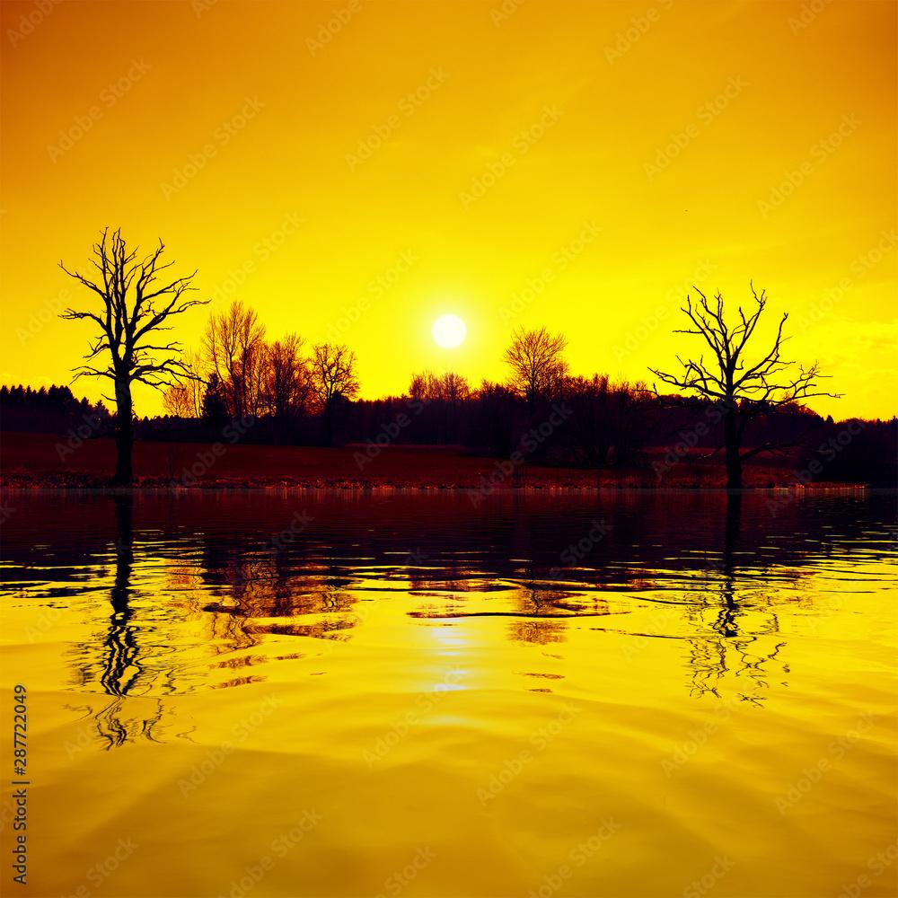 Fototapeta sunset scenery lake and trees