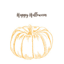 Halloween Pumpkin Sketch Hand Drawing Vector Illustration. Orange Big Ink Pen Pumpkin Isolated On White.