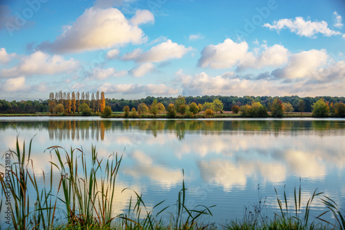 Cadres-photo bureau Nature Trees and clouds reflections on a pond in autumn, Burgundy, France