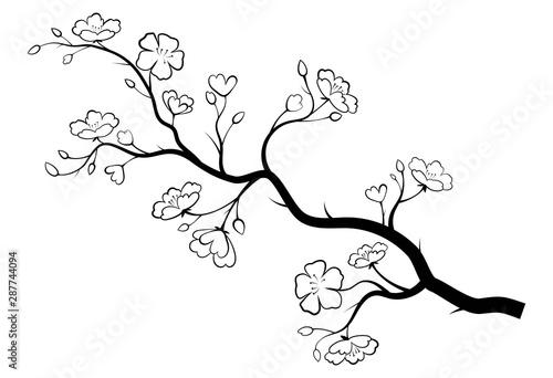 Carta da parati Blooming cherry