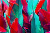 Fototapeta Tęcza - background of red and green leaves lit by the sun