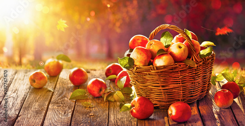 Fotomural  Apples in a Basket Outdoor. Sunny Background