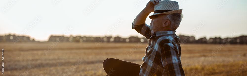 Fototapeta panoramic shot of bearded farmer touching straw hat