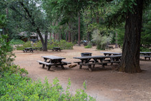 Picnic Area With Tables And Gr...