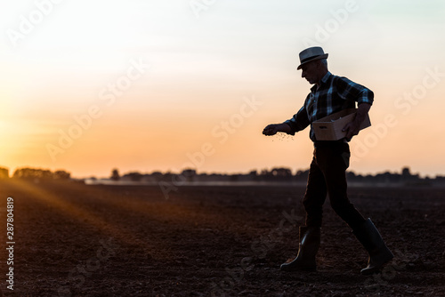 profile of farmer in straw hat walking and sowing seeds