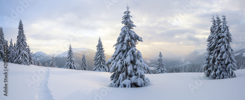 winter-landscape-spectacular-panorama-is-opened-on-mountains-trees-covered-with-white-snow-lawn-and-blue-sky-with-clouds