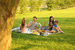Leinwanddruck Bild - Happy family having picnic in park on sunny summer day