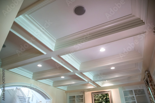 Coffered ceiling and a lot of natural light from the large windows Canvas Print