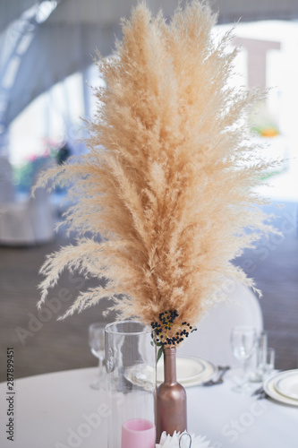 Fototapeta Wedding decoration in boho style. Light colors, in the tent.Wedding table decorated with a vase of pampas grass. Boho style obraz